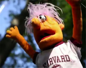 A puppet from the Harvard EdX online course.